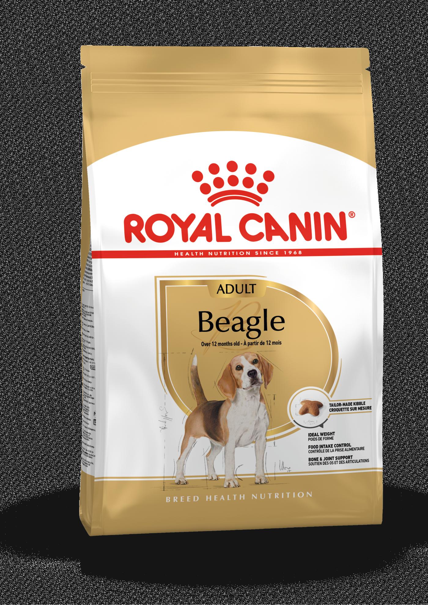 Beagle Adult, 12kg