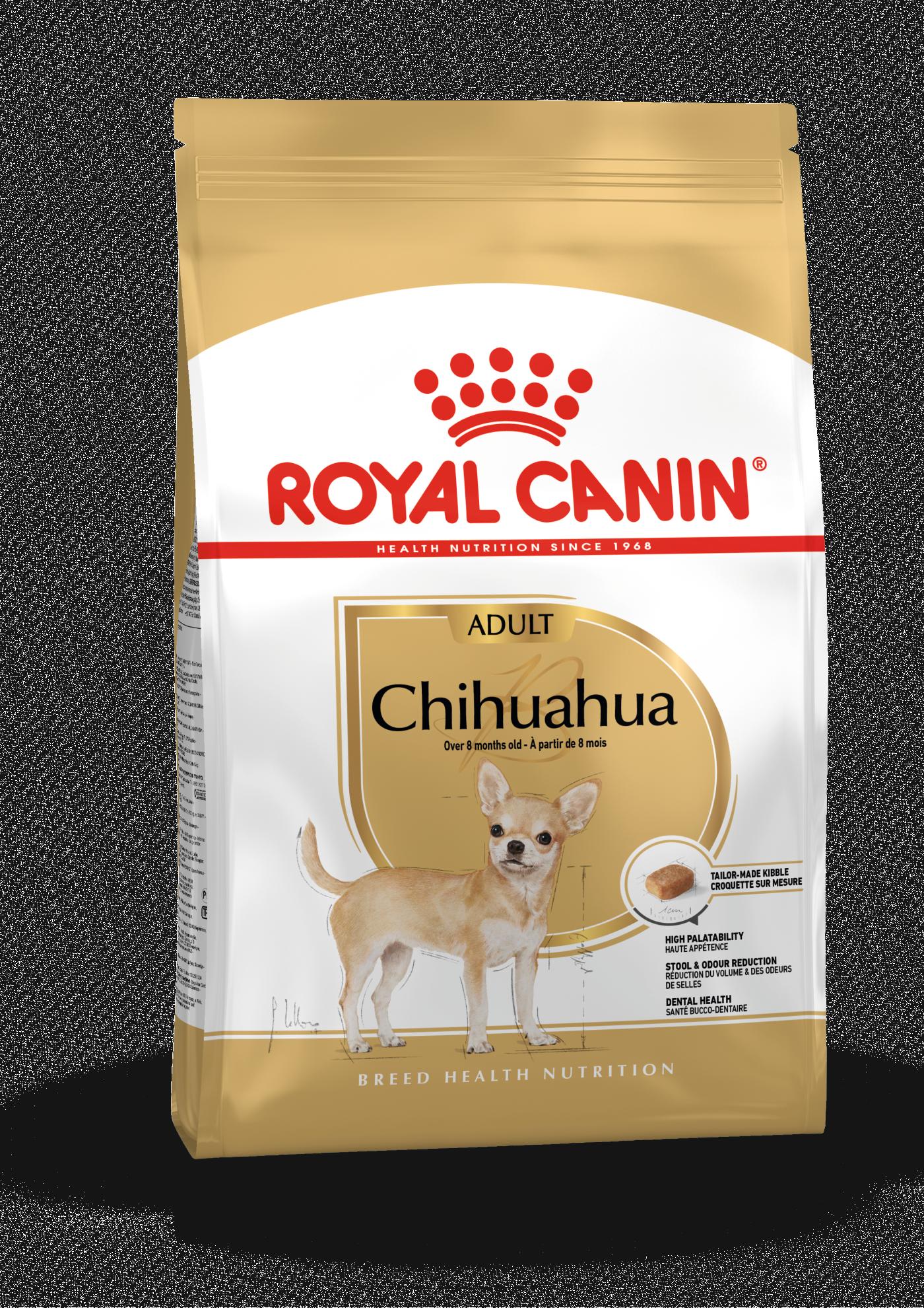Chihuahua Adult, 1,5kg