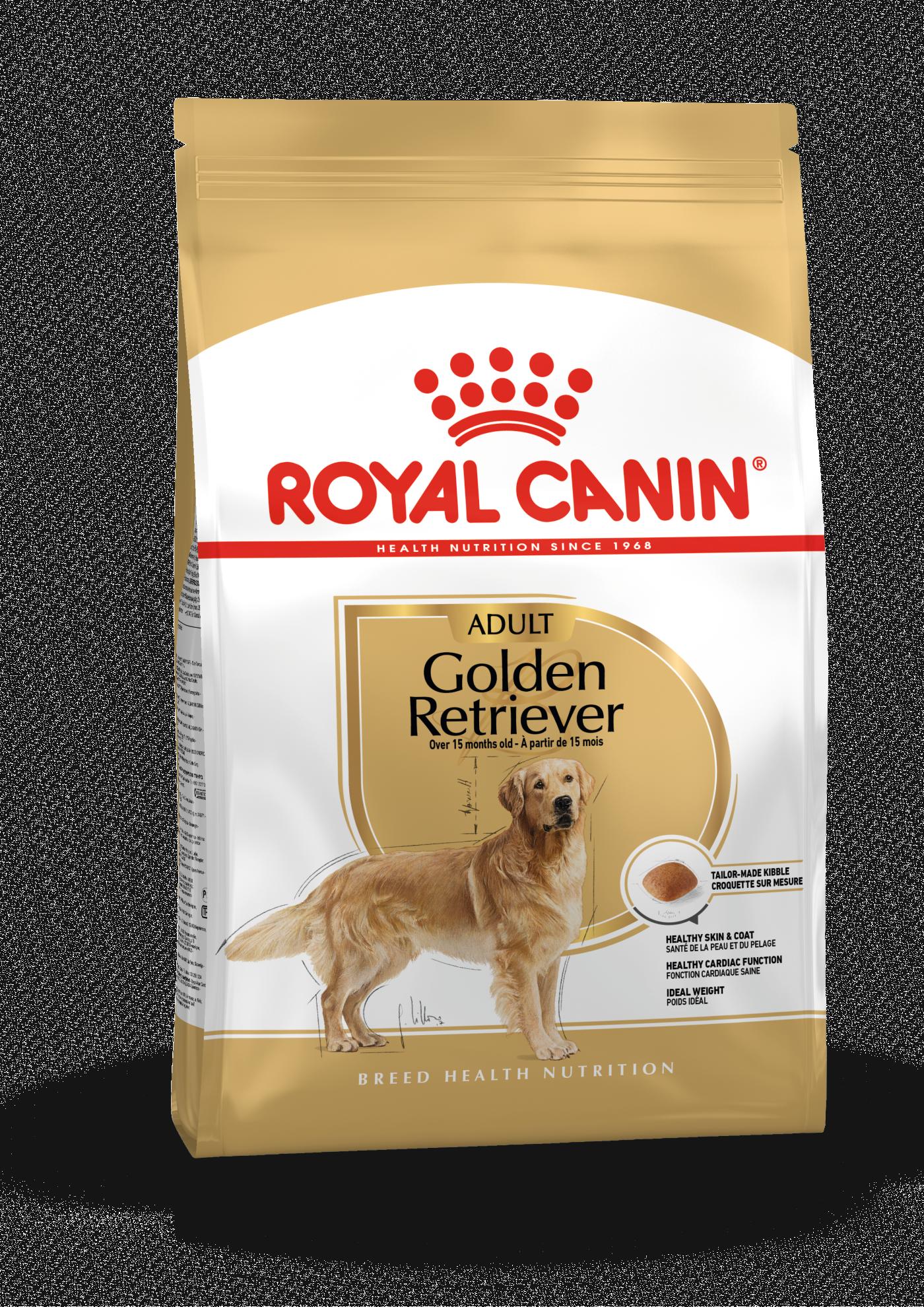 Golden Retriever Adult, 12kg